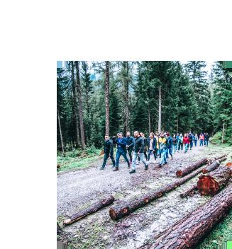 Gruppenfoto des Teams von karriere tutor® beim Sommerfest 2019 im Wald