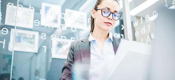 EDV in der Lohn- und Gehaltsbuchhaltung II (MS Office Advanced, Lohn + Gehalt mit DATEV und Lexware )